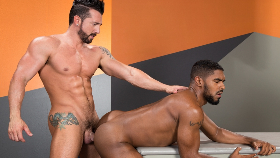 raging-stallion-state-of-arousal